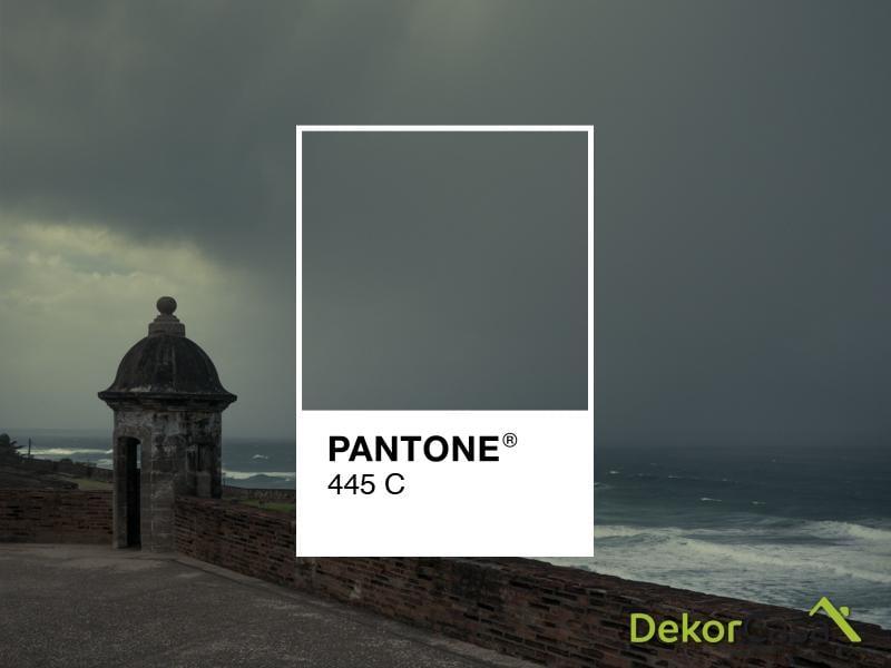 pantone 445c